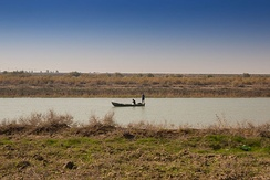 A fishing boat in the Euphrates Southern Iraq