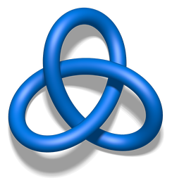 The trefoil knot has Conway notation [3].