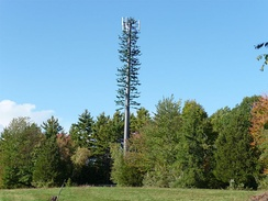 Cellular antenna disguised to look like a tree