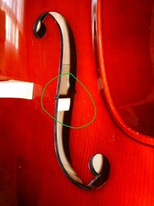 This photo shows the thick soundpost on a double bass (circled in green).