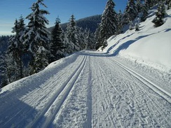 Groomed ski trails for cross-country in Thuringia, track-set for classic skiing at the sides and groomed for skate skiing in the center.