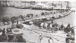 New Zealand Mounted Rifle Brigade transport crossing Pontoon Bridge at Serapeum 6 March 1916