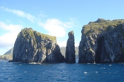 Cliffs at Gough and Inaccessible Islands, declared World Heritage Site by UNESCO in 1995.