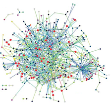 Interactions between proteins are frequently visualized and analyzed using networks. This network is made up of protein–protein interactions from Treponema pallidum, the causative agent of syphilis and other diseases.
