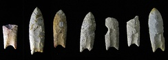 Collection of Clovis points