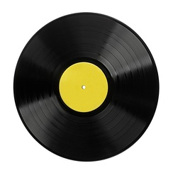 A typical 12-inch LP vinyl record.