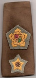 South African army commandant insignia1950-1994