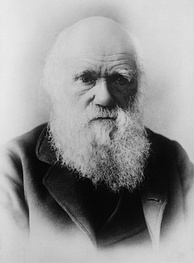 Charles Darwin (1809–1882), whose theory of evolution by natural selection is the foundation of modern biological sciences