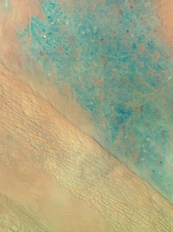 Satellite view of Al-Dahna desert