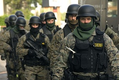 An Oregon Sheriff's Department SWAT team in full tactical gear.