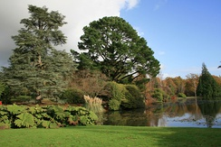 Sheffield Park Garden, a landscape garden originally laid out in the 18th century by Capability Brown