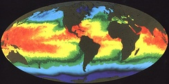 Global sea surface temperature (SST)
