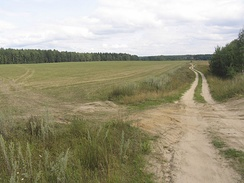 A typical landscape of Moscow Oblast