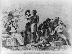 Slave being inspected, from Captain Canot; or, Twenty Years of an African Slaver