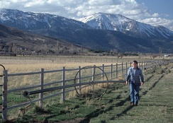 Ranching in Washoe County