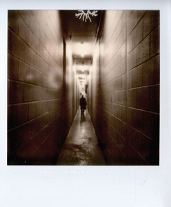 Shot on Impossible Project PX600 Silver Shade UV+ film