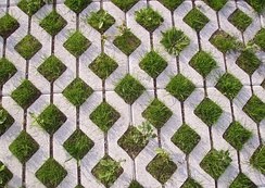 Grass pavement
