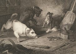 Rat-catching, 1823, by Edwin Landseer, engraving, published by Hurst, Robinson & Co.