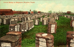 Cotton ready for shipment, Houston, Texas (postcard, circa 1911)
