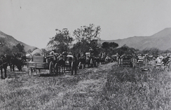 Forced relocation from Warner's Ranch to Pala (1903)
