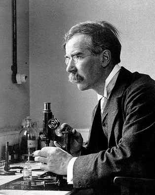 Almroth Edward Wright developed the first effective typhoid vaccine.