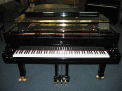 The piano, a common keyboard instrument