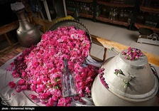A small manufactory of rose water in Kashan, Iran