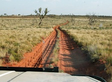 Little Sandy Desert as seen from the Canning Stock Route