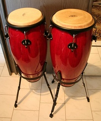 Conga drums, one of the foundational instruments of salsa music.