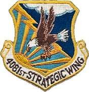 4081ststrategicwing-patch.jpg
