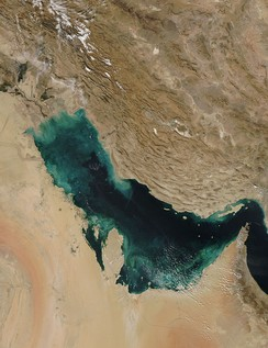 Persian Gulf from space.