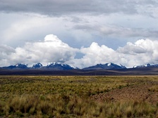The Bolivian Altiplano at about 4,250 m (14,000 feet). The snow-covered peaks of the Cordillera Real rise in the background.