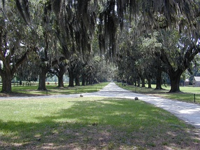 Boone Hall in Mount Pleasant