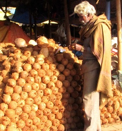 Coconuts being sold on a street in India