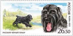 Русский чёрный терьер на почтовой марке России 2015 года (ЦФА [ИТЦ «Марка»] №1957)