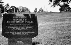 1918 influenza epidemic burial site in Auckland, New Zealand