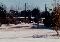 Snow in Jacksonville on December 23, 1989