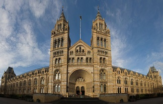 The Natural History Museum, shown in wide-angle view here, has an ornate terracotta facade by Gibbs and Canning Limited typical of high Victorian architecture. The terracotta mouldings represent the past and present diversity of nature.