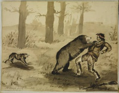 A rough and tumble with a grizzly (Harry Bullock-Webster)