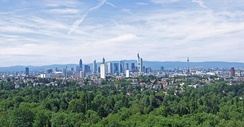 Frankfurt City Forest seen from Goethe Tower, Frankfurt's skyline in the background (2007)