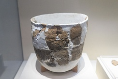 Pottery with re-construction repairs found in Xianrendong cave, dating to 20,000–10,000 years ago.[19]