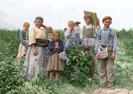 Polish immigrants working on the farm, 1909. The welfare system was practically non-existent before the 1930s and the economic pressures on the poor were giving rise to child labor.