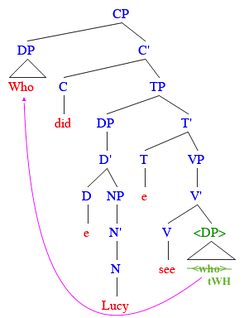 "This example shows the movement of ""WH"" DP [who] from the complement position of the verb to the specifier position of CP."