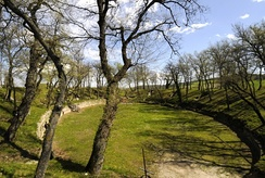 Roman Amphitheatre in the Archaeological Park of Urbs Salvia