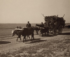 Assyrian refugees on a wagon moving to a newly constructed village on the Khabur River in Syria.