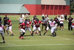 The Atlanta Falcons scrimmaging at their training camp in Flowery Branch, Georgia, July 2016.
