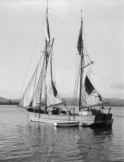 A New Zealand scow around 1900