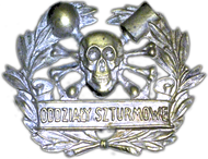 Cap badge of the Polish Storm Detachment during Silesian Uprisings