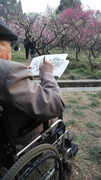 An elderly man sketches plum blossoms at the festival.