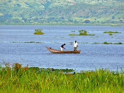 White Nile in Uganda